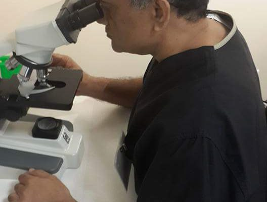 Counting stem cells